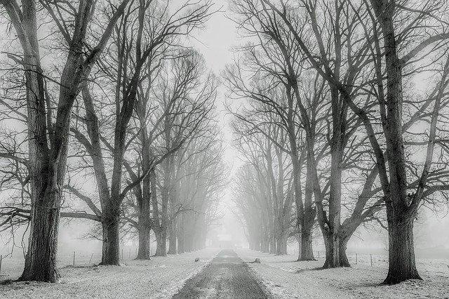 jazda zimą